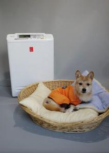 アイリスオーヤマの「ペット用空気清浄機 PM2.5ウォッチャー PMMS-AC100-P」