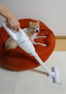 アイリスオーヤマのペット用超軽量コードレス掃除機「Design for Pets PIC-SLDC1」