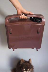 畳むとツールケースくらいの大きさになります。下にいるチワワで大体のサイズをイメージしていただけるでしょうかw